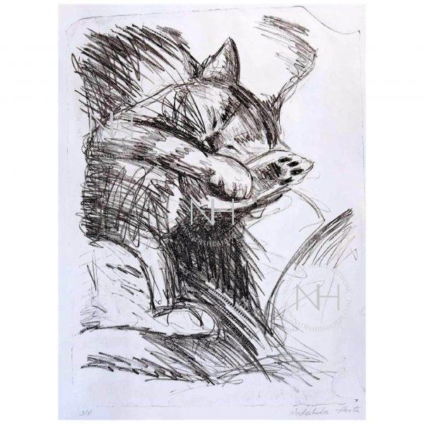 Katze_Tiger_schläft_Lithografie_Nadeshda_Horte