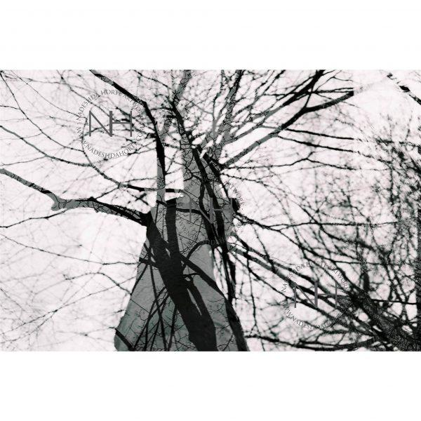 Stille, Mehrfachbelichtung, Schwarz Weiß Fotografie, Nadeshda Horte