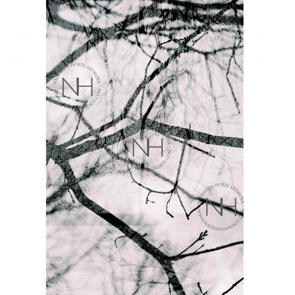 Stille, Ruhe, Analogfotografie, Wanbild, Poster, Nadeshda Horte