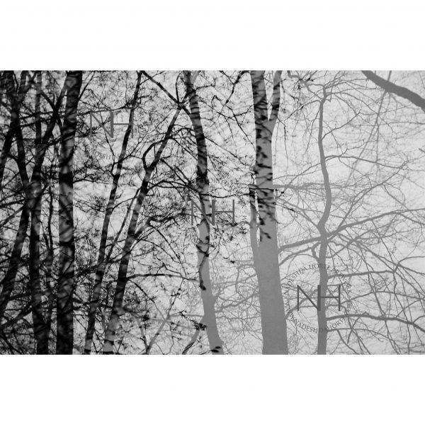Stille, Spazieren, SW Fotografie, Analogfotografie, Nadeshda Horte